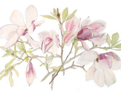 Open Canvas artist Irene Jacob Magnolia