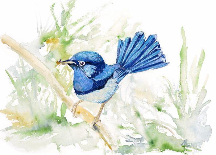 hm_designer_bird_fa