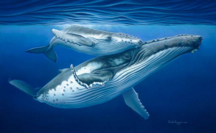 humpback-mother-calf