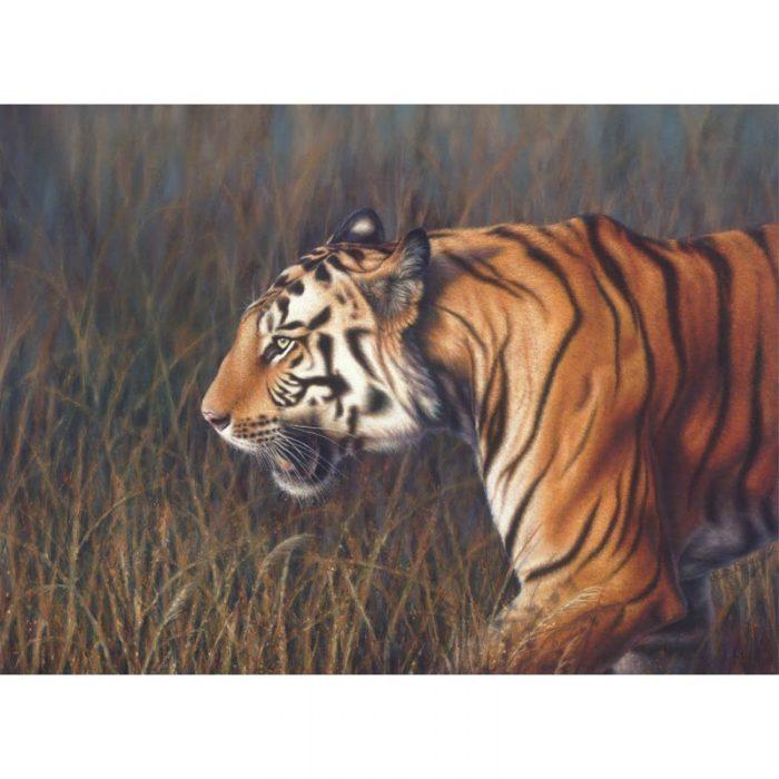 tiger-print