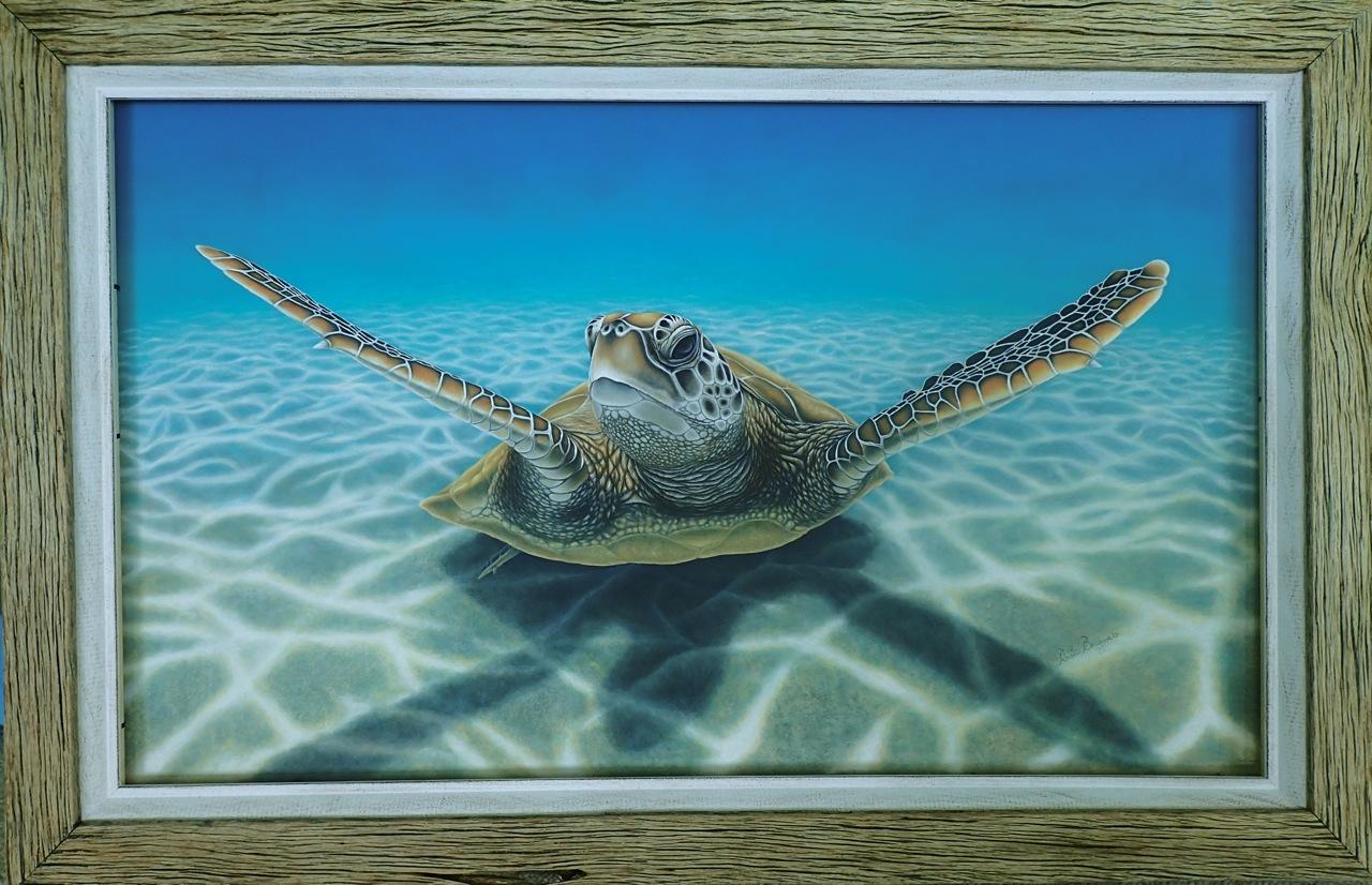 Open Canvas artist Renata Bruynzeel Green Turtle framed original
